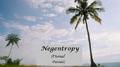 Negentropy-00-mine