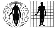 Projections-body-01-goog