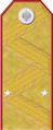 Погон РИА OF7 генерал-майор вертикально