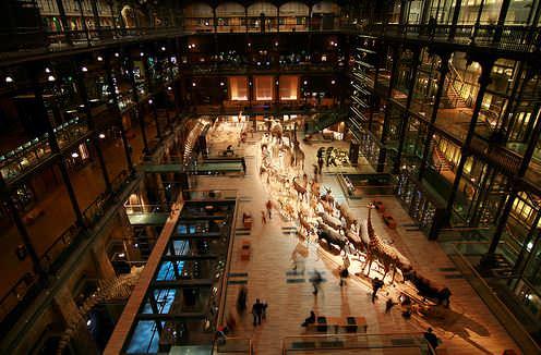 Национальный музей естественной истории (Франция)