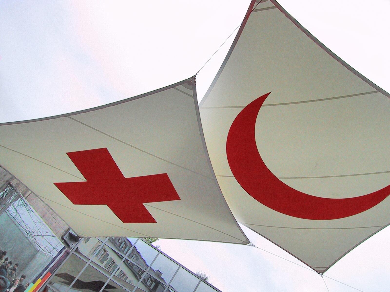 Международное движение Красного Креста и Красного Полумесяца
