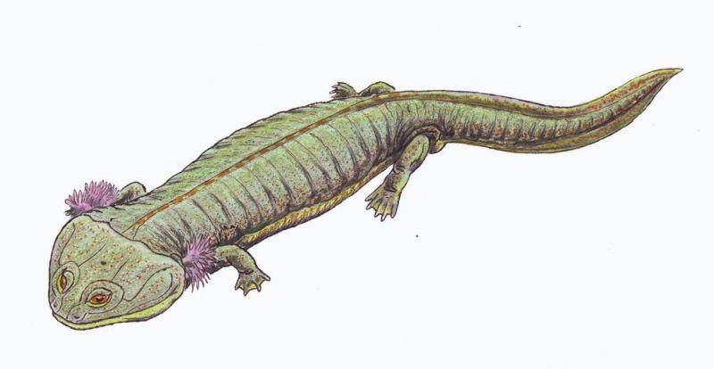 Двинозавр