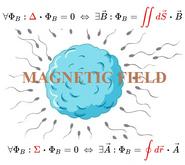 Laws-fertilization-Magnetic-Field-01-mine