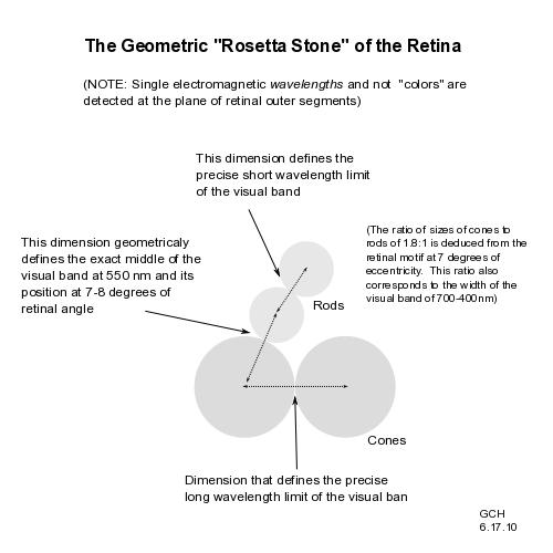 Интерпретация кривой Остерберга