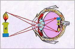 Оптические устройства
