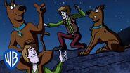 Scooby-Doo! We're Okay! WB Kids