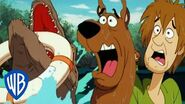 Scooby-Doo! Scooby Overboard! WB Kids