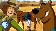 Scooby-Doo! The Shoeing Experience WB Kids