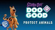 Doo Good and Protect Animals WB Kids