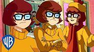 Scooby-Doo! Sarcastic Velma WB Kids