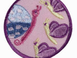Social Butterfly (Junior badge)