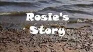 Rosie's Story- A Better Beach for Everyone