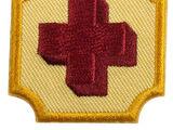 Ambassador First Aid (Ambassador badge)