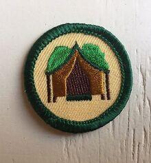 Retired-Girl-Scout-2001-2011-Junior-CAMP-TOGETHER-BADGE.jpg