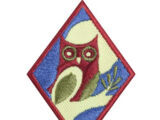 Night Owl (Cadette badge)
