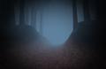 Insidetheforest.png