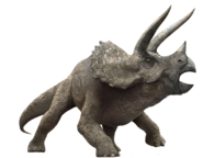 Triceratops from Jurassic Park