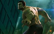 Hulk in the avengers-wide