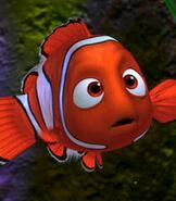 Nemo in Finding Nemo