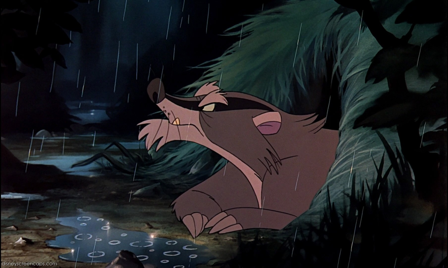 Cranky Badger (The Fox and the Hound)
