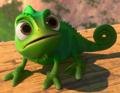 Profile - Pascal