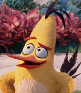 Chuck the Bird