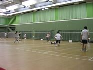 Zhongzhen badminton