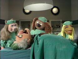 Vetshospital-George.jpg