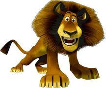 Alex the Lion.jpg