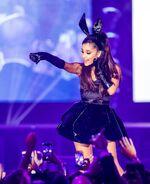 Ariana new year 2015-2016