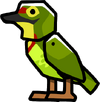 Asian Barbet.png