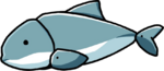 Porpoise.png