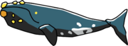 Right Whale.png