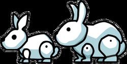 Bunny vs Rabbity.png