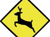 Deer Caution Sign