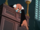 Judge (The Trial of Donald Duck)