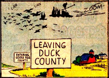 Duck County