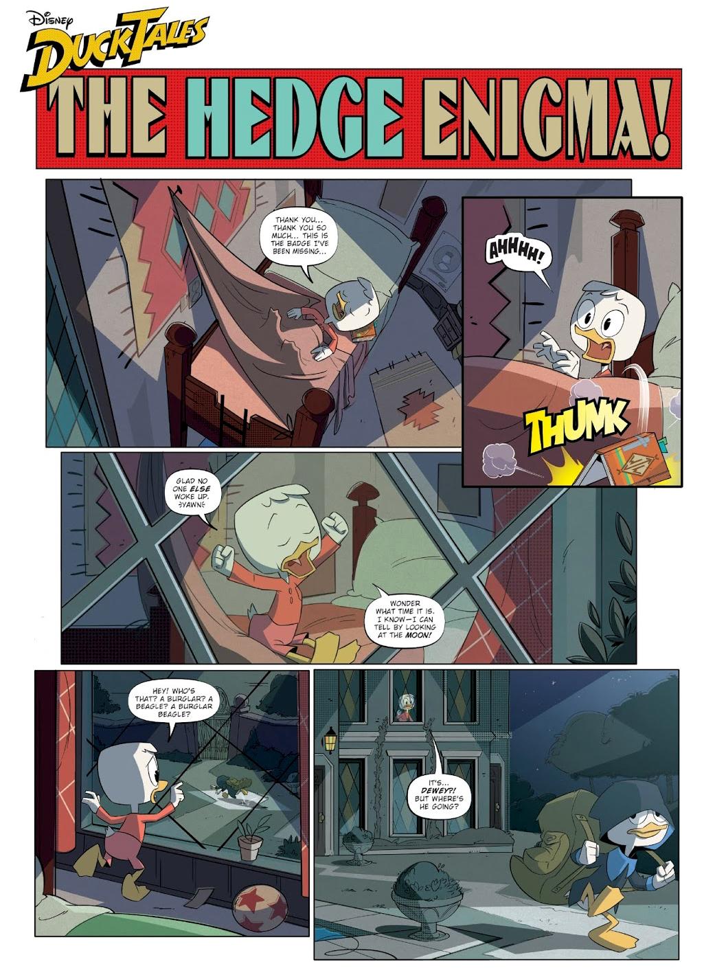 The Hedge Enigma