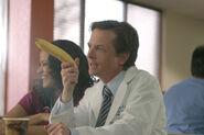 3x12 Casey banana