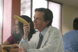 3x12 Casey banana.jpg