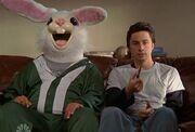 My Rabbit.jpg
