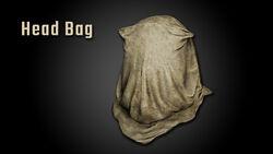 Head Bag Img 01.jpg