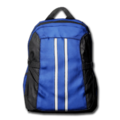 Backpack 11.png