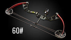 Compound Bow Img 01.jpg