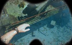 Diving Img 04.jpg