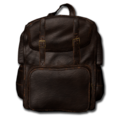 Leather Backpack 02.png
