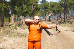 Compound Bow Img 02.jpg