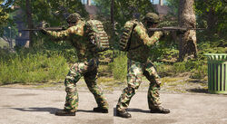 Weapon Animations Img 01.jpg