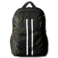 Backpack 02.png