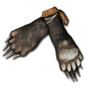 Bear Paws.png